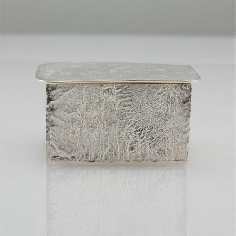 Reticulated Silver Treasure Box
